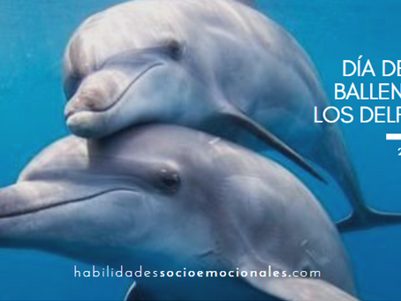 Por esto se cree que los delfines son inteligentes