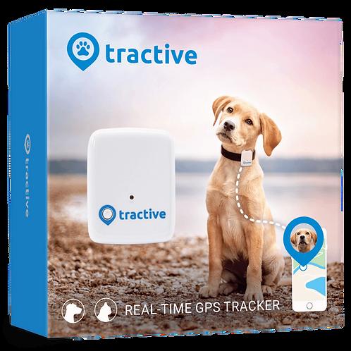 Tractive Traceur GPS chien - Collier GPS pour chien, léger et étanche avec porté