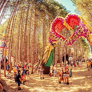 Electric Forest (Festival Squad)