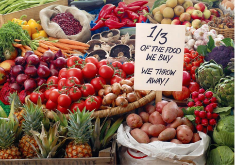 WORLD'S FIRST FOOD WASTE PROGRAMME