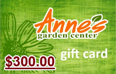 $300.00 Gift Card