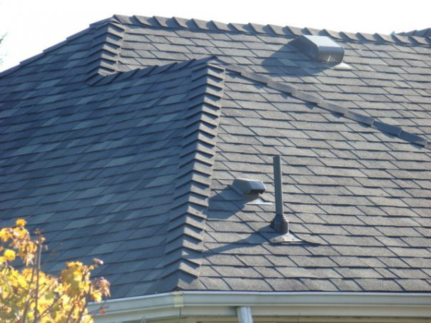 Shingled Perfection