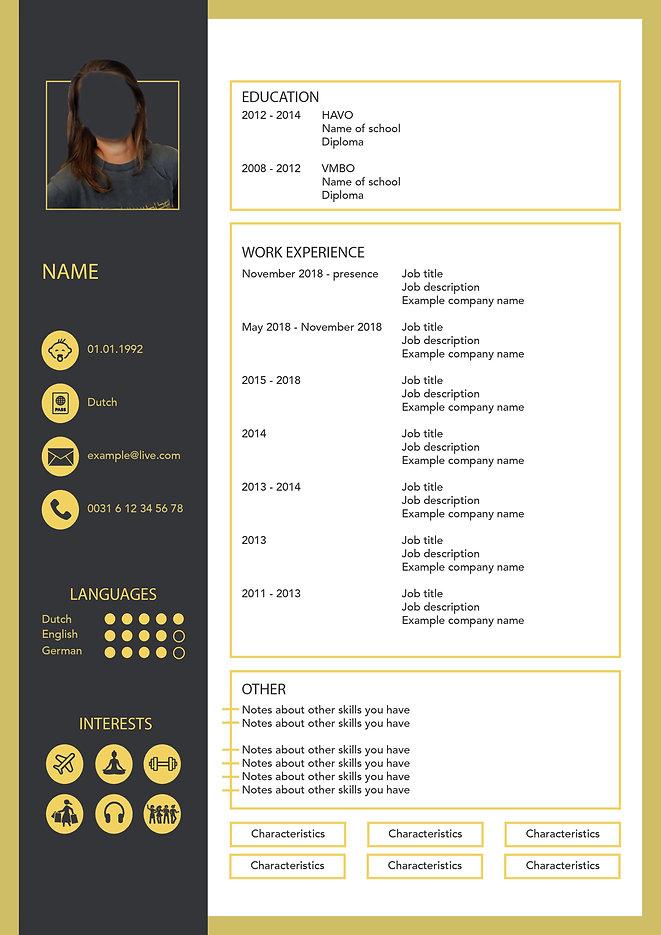 CV voorbeeld geel grijs.jpg