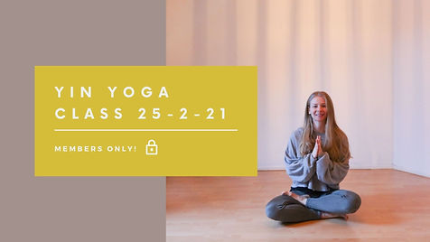 Yin Yoga class 25-2-21.jpg