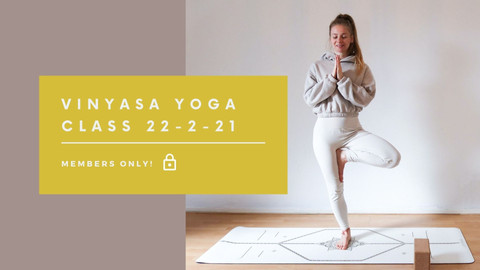 Vinyasa Yoga class | 40 min
