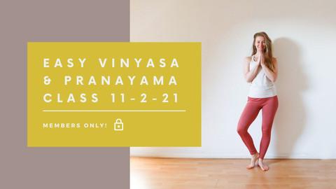 Easy Vinyasa and Pranayama class | 40 min