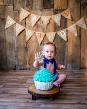 1st Birthday Cake Smash, Milestone Portr