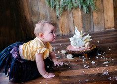 1st birthday cake smash portraits, Miles