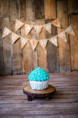 1st Birthday Cake Smash, Milestone Portrait