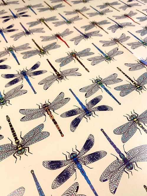 Dragonflies Gift Wrap - Cream