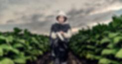 Teens of the Tobacco Fields Photo.jpg