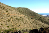Discovering Gold in the Malaga Hills