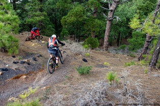 Hectic Trails for Days on La Palma