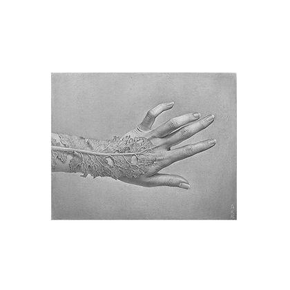 森天飛 Metamorphoses-into-leaf-veins.jpg