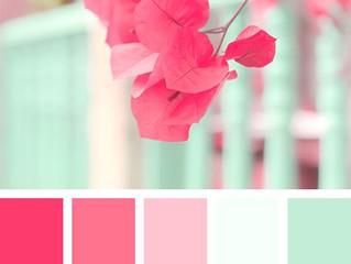 Color Palettes, Inspiration