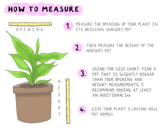 hoe to measure.jpg