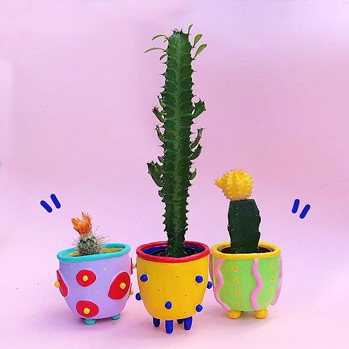 Set of all 3 Mini Pots