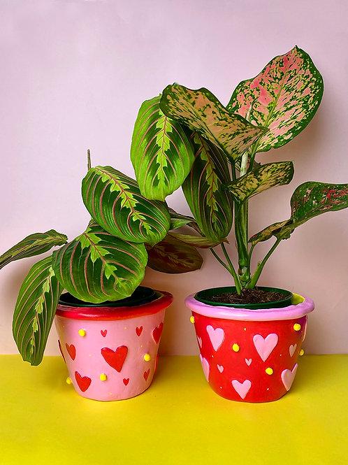 The Love Pots