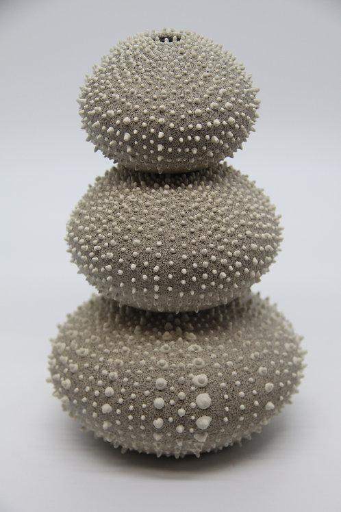 Urchin- Medium