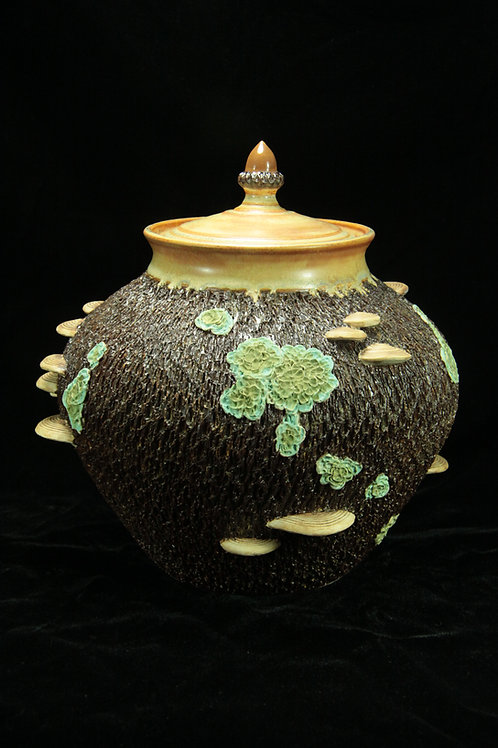 Bark Lidded Vessel with Lichens