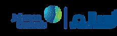 York logo 2.png