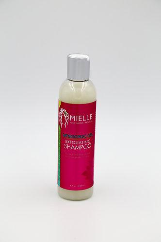 Miell Organics Mongongo Oil Exfoliating Shampoo