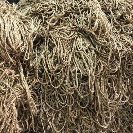 Echevaux de cordes