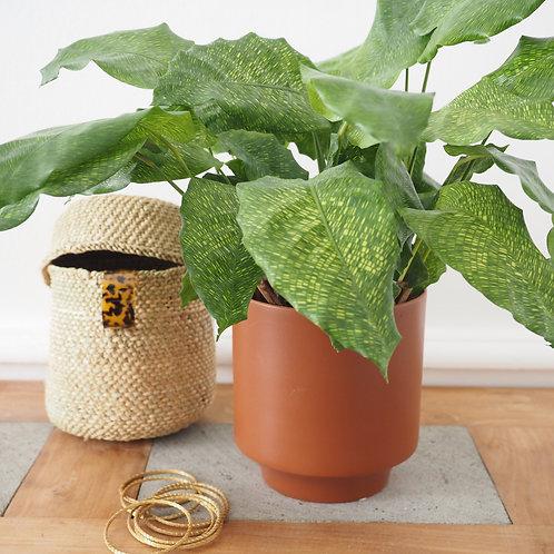cache-pot-fleur-ceramique-gres-nordal-yuda-terracotta-et-plante