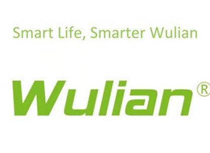 Wulian.jpg