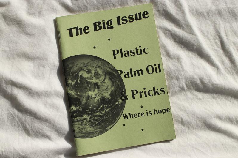 The Big Issue ZIne