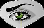 biometrics-154660_1280.png