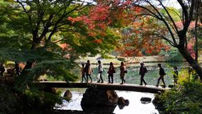 Koyo Meguri Stamp Rally: la chasse aux tampons des jardins de Tokyo