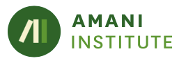 Partnership with the Amani Institute, Brazil