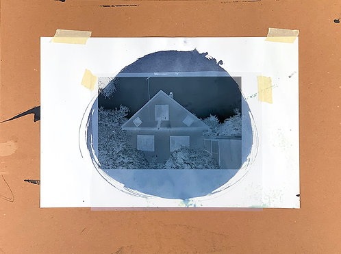 Untitled (Racoon), 2019, Laser Print on Transparency, 24in x 18in