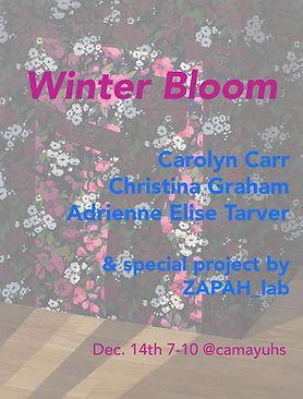 winter_bloom_PR.jpg