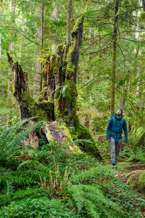 Ladysmith   British Columbia   Vancouver Island