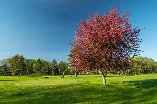 Faribault Golf Course