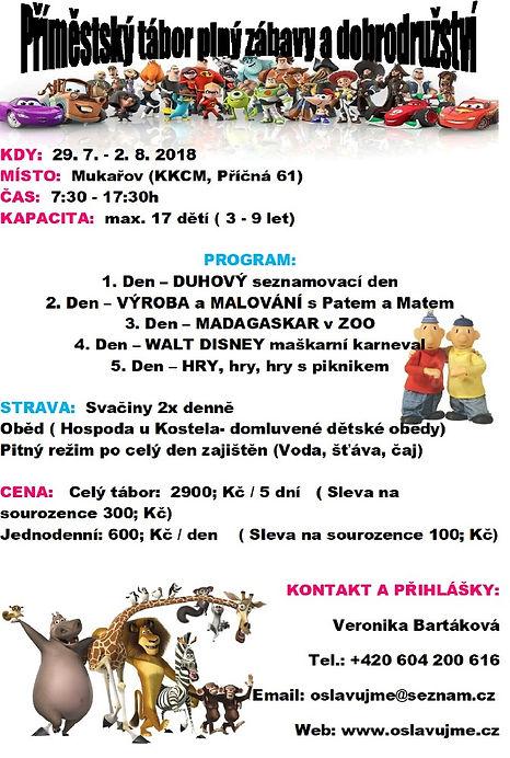 Letní přím. tábor_Bartáková_2019.jpg