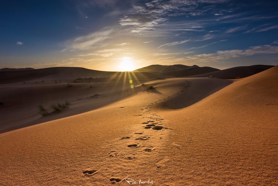 Autopista del Sahara