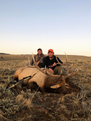Wyoming Guided Bull Elk Hunts with O'Brien Creek Outfitters