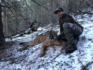 Wyoming Guided Lion Hunt with O'Brien Creek Outfitters