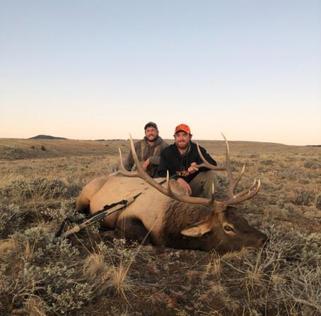 2021 Wyoming Elk Application Reminder
