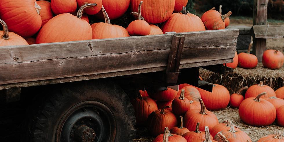 2:00 pm, Oct 7th - Pumpkin Patch