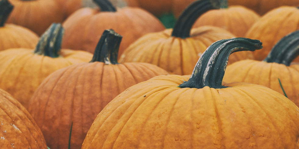 Sold Out. 1:30 pm, Oct 12th - Pumpkin Patch