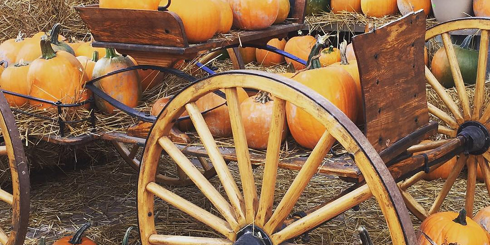 10:30 am, Oct 3rd - Pumpkin Patch
