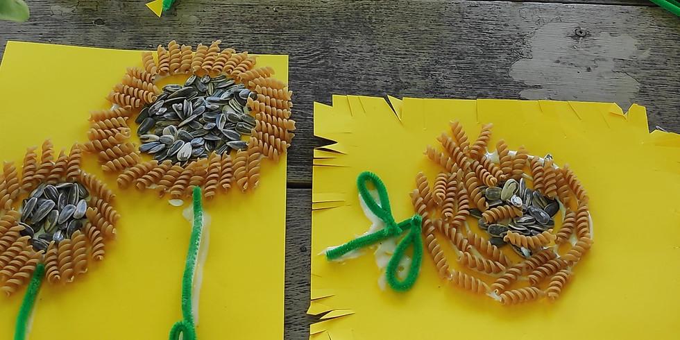1:00pm Sunflower Seed Harvest