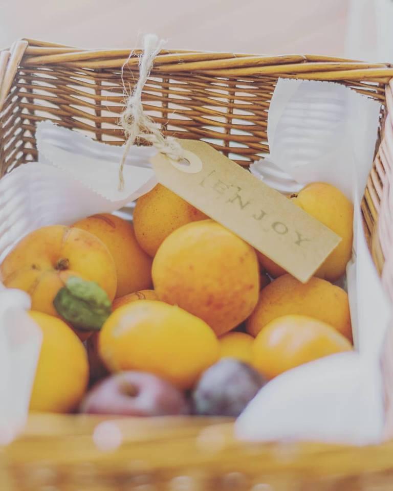 Bio Fruit