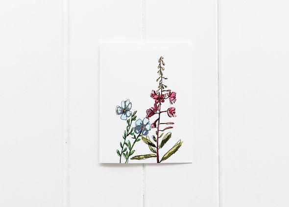 WIldflower Blank Card Outside 3.jpg