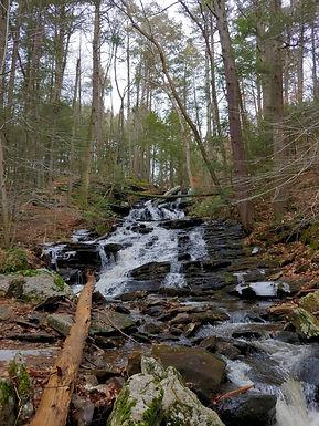 Wooded waterfall.jpg