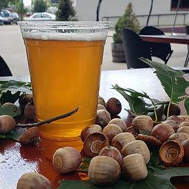 Beer and acorns.jpg